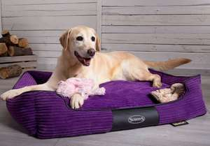 Scruffs Milan Orthopaedic Memory Foam Bed For Dogs