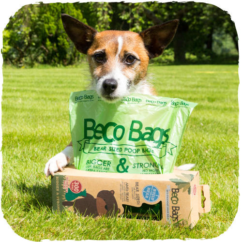 Beco Bags Eco-Friendly Poop Bags