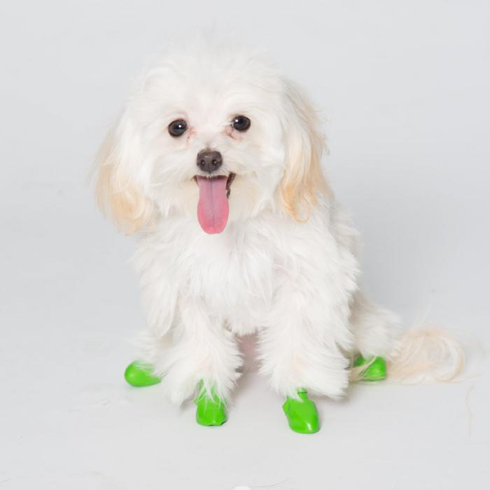 Pawz Rubber Dog Boots - Tiny Green