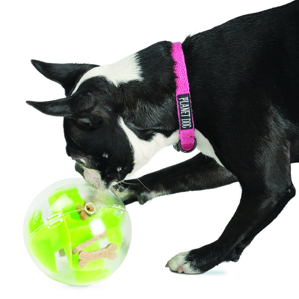 Planet Dog Orbee-Tuff Mazee interactive puzzle ball for dogs - Green