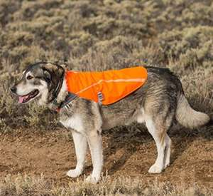 Ruffwear Track Jacket - Reflective Dog Jacket