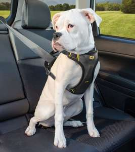 Kurgo Impact Dog Car Harness