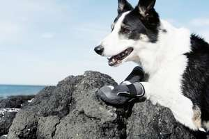 Hurtta Outback Dog Boots hiking