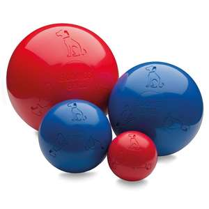 Company Of Animals Boomer Ball Dog Toy - 4 sizes