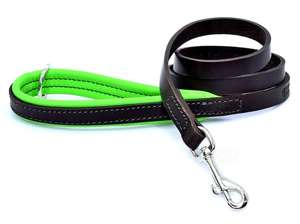 D&H Contemporary Colours Luxury Leather Dog Lead Green