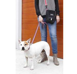 DOOG Striped Cotton Canvas collar, lead and walkie shoulder bag