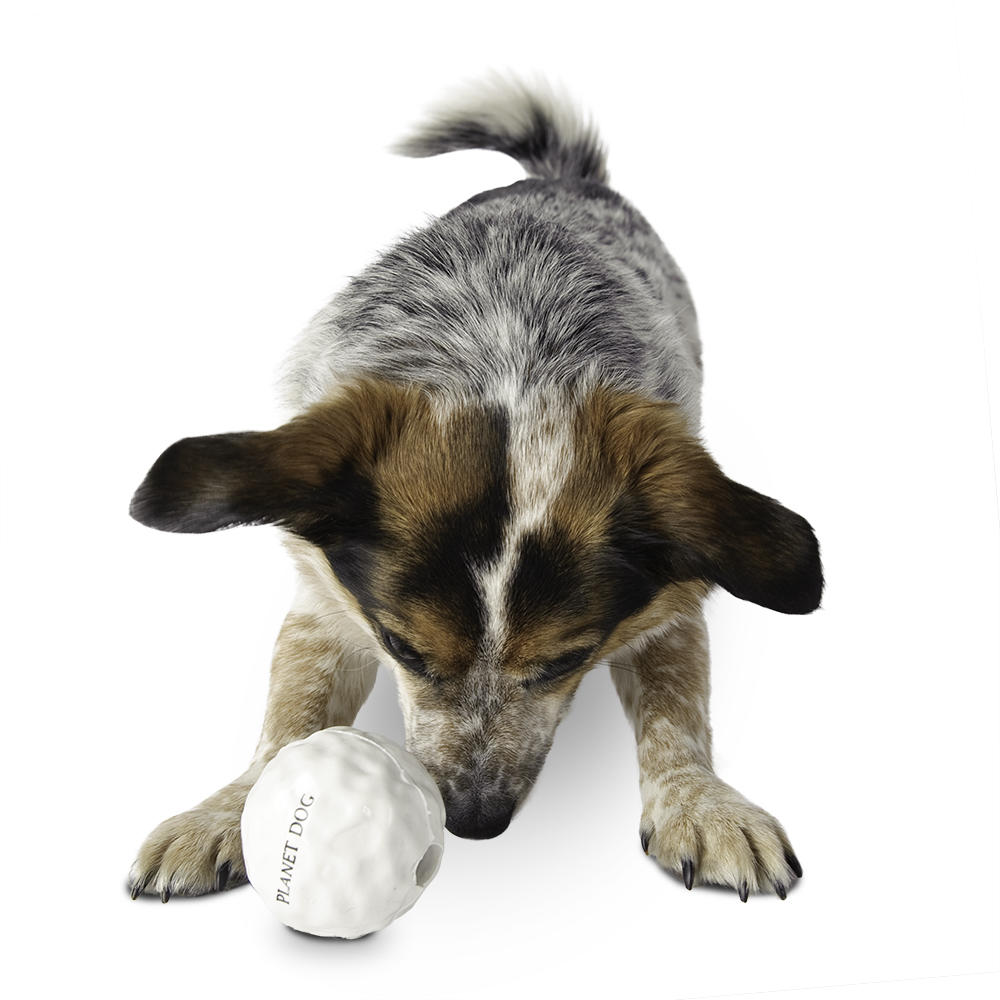 Planet Dog Orbee-Tuff Snowball Tough Chew Toy For Dogs