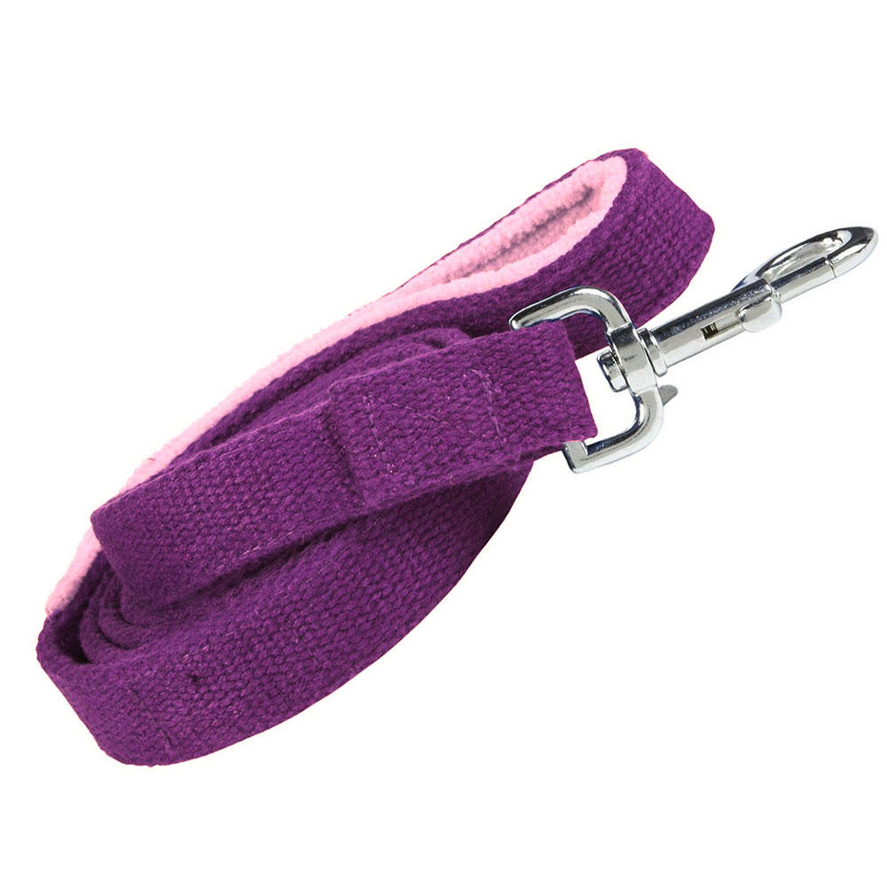 Planet Dog Hemp Leash with Fleece Lined Handle - Purple