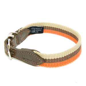 D&H Wide Striped Cotton Webbing Dog Collar - Cream, Orange & Brown Stripe
