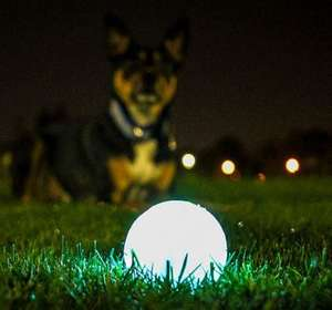 Chuckit! Glow in the dark ball for dogs