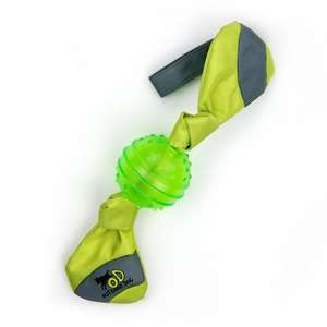 All for Paws Tug and Toss Dog Fetch Toy - Green