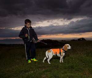 Kurgo Reflect and Protect Hi Vis Dog Vest