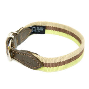D&H Wide Striped Cotton Webbing Dog Collar - Cream, Green & Brown Stripe