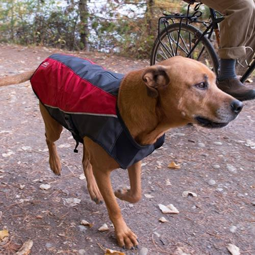 EzyDog Element Jacket For Dogs