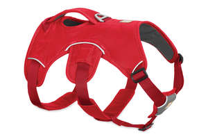 Ruffwear Web Master Harness For Dogs Red Currant