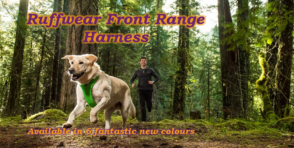 Bare Bones Pet Supplies   Online Pet Shop   Top Brands