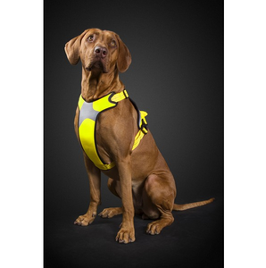 Hurtta Lifeguard Dazzle Dog Harness Yellow