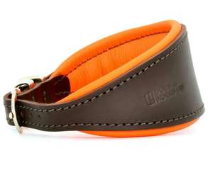 D&H Contemporary Colours Leather Hound Collar - Orange