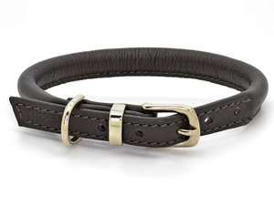 D&H Contemporary Rolled Leather Dog Collar brown
