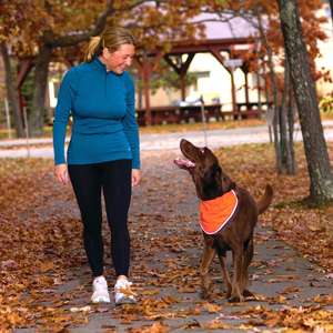 Kurgo Reflect and Protect bandana for dog safety