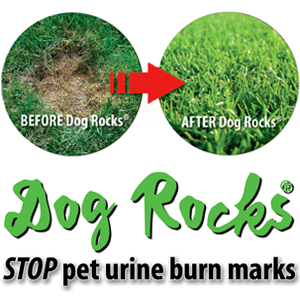 Dog Rocks to Prevent lawn burn patches