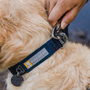 Ruffwear Front Range Dog Collar - Close Up