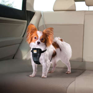 Kurgo Enhanced Strength Tru-Fit Car Harness For Dogs