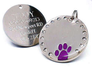 Crystal & Paw Engraved Pet ID Tags Purple