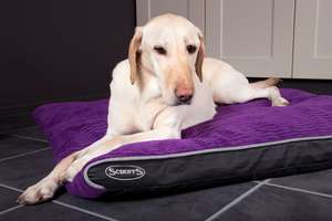 Scruffs Milan Memory Orthopaedic Pet Mattress For Dogs