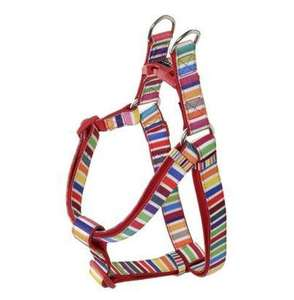 DOOG Neoprene Dog Harness Scooby