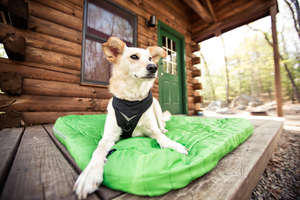 Kurgo Loft Duvet Cover For Dog Beds in Green