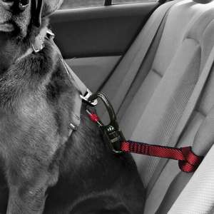 Kirgo swivel seatbelt tether - close up