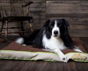 Scruffs Eco Pet Mattress For Dogs