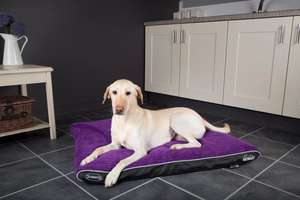 Scruffs Milan Memory Foam Pet Mattress For Dogs