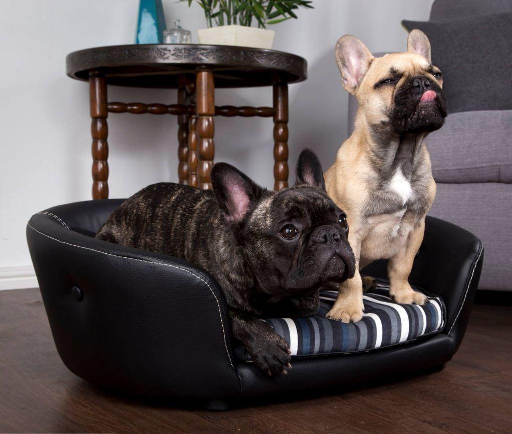 Scruffs Regent Handmade Pet Sofa Bed For Dogs