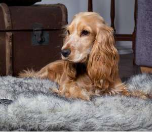 Scruffs Siberian Reversible Soft Cosy Dog Mattress