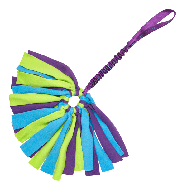 Tug-E-Nuff Crazy Thing Bungee Tug Toy For Dogs - Purple Green and Blue