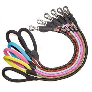 Long Paws Comfort Rope Leash Colours