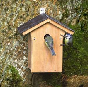CJ Portland Slate Roof Nest Box For Wild Birds