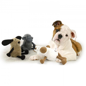 AFP lamb cuddle flopper with dog