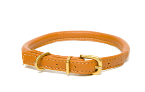 D&H Classic Rolled Leather dog collar in Tan