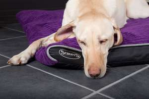 Scruffs Milan Orthopaedic Pet Mattress For Large Dogs