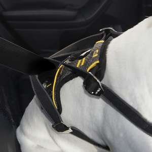 Kurgo Impact Crash Tested Car Safety Harness
