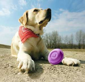 Kurgo Winga Disc Thrower - fetch toy