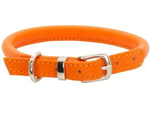 D&H Contemporary Rolled Leather Dog Collar orange