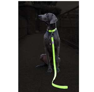 Long Paws Urban Trek Reflective Neon Leash Dark