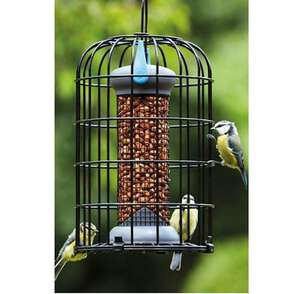 Petface Squirrel Proof Wild Bird Feeder