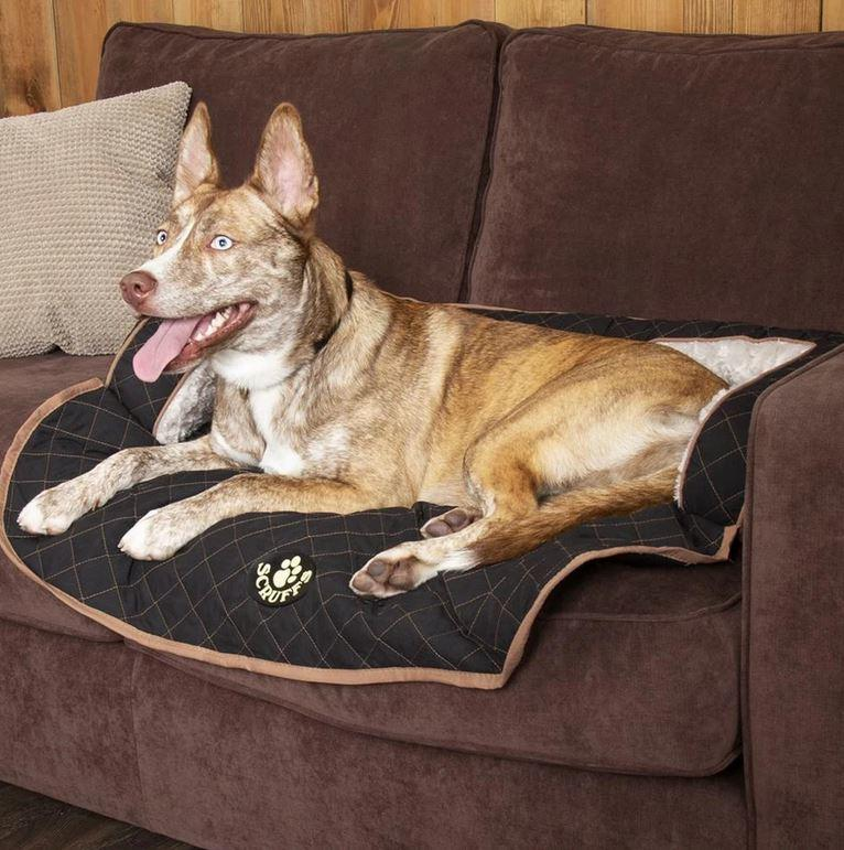 Scruffs Wilton Sofa Bed For Dogs Black