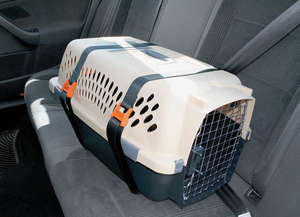 Kurgo carrier keeper car restraints for pet carriers