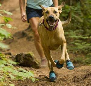 Ruffwear Grip Trex Dog Boots For Running Blue Spring
